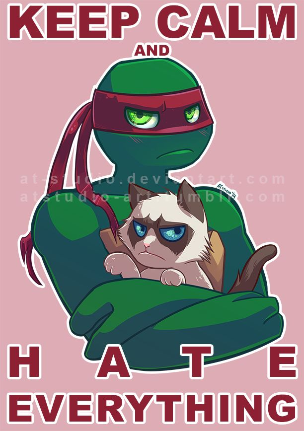 Grumpy Raph and Grumpy Cat by AT-Studio.deviantart.com on @deviantART