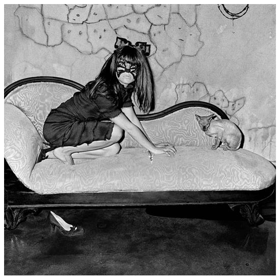 Animal Abstraction © Roger Ballen Photography, 2005