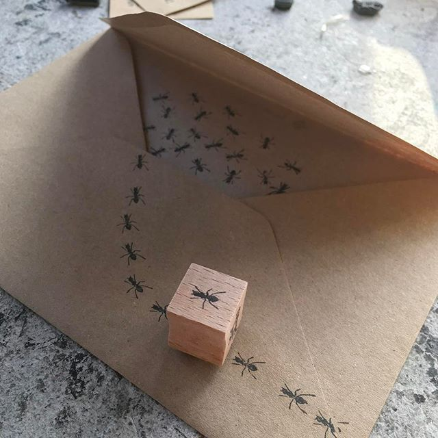 Die besten 25+ Ameisenarten Ideen auf Pinterest Gottesanbeterin - ameisen in der k che was tun