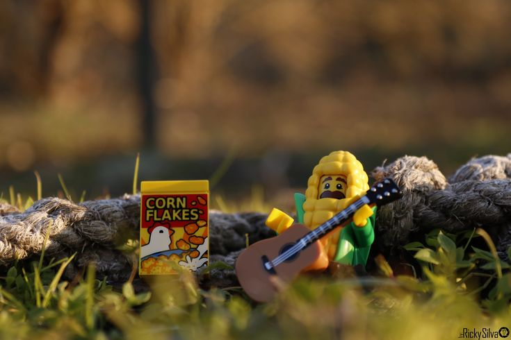 https://flic.kr/p/21MDmow | [Real World] (46) Generations Of Corn  #Canon #Comunidade 0937 #Photography #LegoPhotography #LegoMinifig #Lego #Minifig #Minifigures #Legos #PhotographyLego