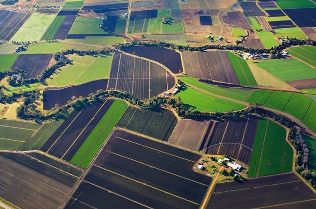 Fields #scenicrim