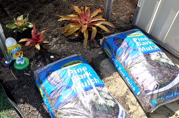 Our Trampoline Garden » The Organised Housewife #searles #pinebarkmulch