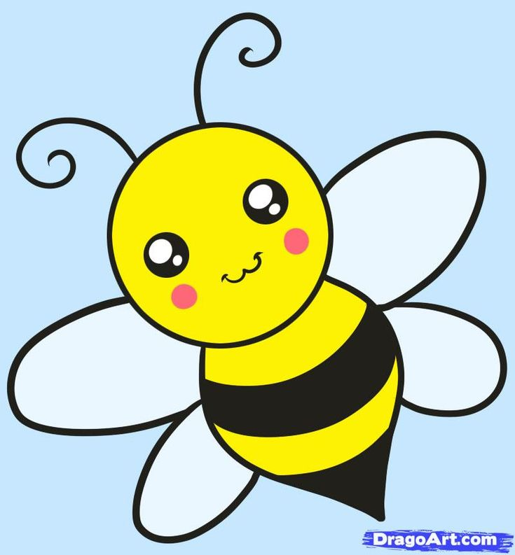 how to draw a bee for kids step - Cartoon Drawings Kids