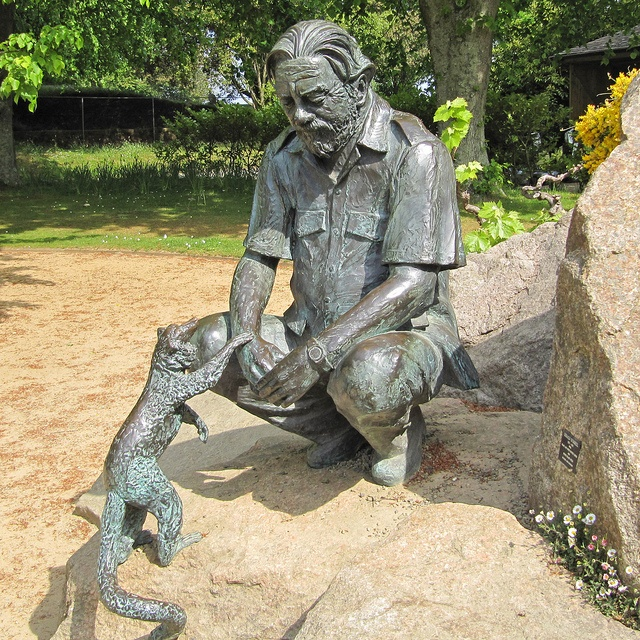 Gerald Durrell statue Near the entrance of the Durrell wildlife conservation park, Jersey, Channel Islands. Ref: 1910