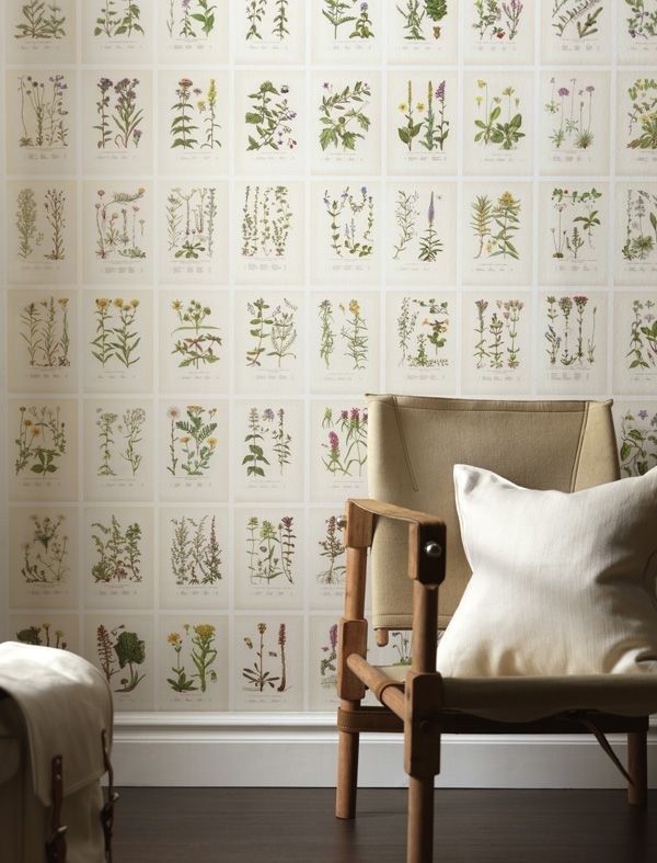 Sandberg's 'Botanica' wallpaper includes 234 plants arranged to look like pages out of a botanical book.