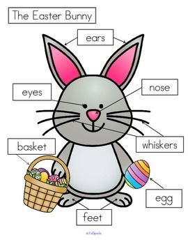 *** FREE *** 3 differentiated ways to label the Easter Bunny: - cut and paste written labels on top of words;  - cut and paste written labels on blank labels;  - or write the words in the blank labels.