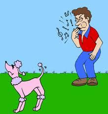 Teach Your Dog to Come When Called, No Matter What! - See more at: http://www.thedogtrainingsecret.com/blog/teaching-dog-called-matter/#sthash.TRPH9SJC.dpuf