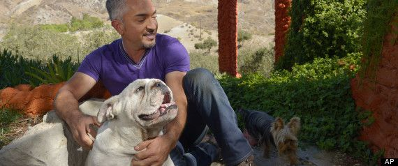 """The Dog Whisperer"" Cesar Millan recently opened up about his struggle with depression after his divorce. In 2010, Millan hit what he calls ""rock bottom"" after the death of his favorite dog and the end of his marriage to wife Ilusion Millan -- even attempting suicide by overdosing on pills."