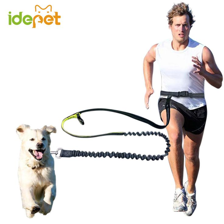 Elastic Waist Dog Leash Running Jogging Dog Sport Product Adjustable Nylon Dog Leash With Reflective Strip Pet Accessories 10S2 //Price: $21.96 & FREE Shipping //     #hashtag4