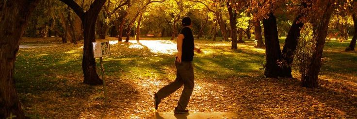 Disc Golf Rules for Recreational Play