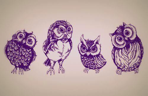 """Awesome Owl Tattoo!! Love the last one.. He's all like """"huh? O.o"""""""