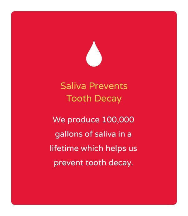 """Happy """"Tooth-Day""""! Farah Flossit here, wishing everyone well on this blessed day!:) Today I want to share a collection of fun facts & did you knows. I'm also going to BUST some myths & give you the real facts.  DID YOU KNOW? *Dental Floss was first made in 1882 from silk. *32% of Americans …"""