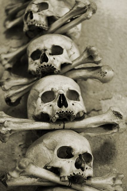 #skulls