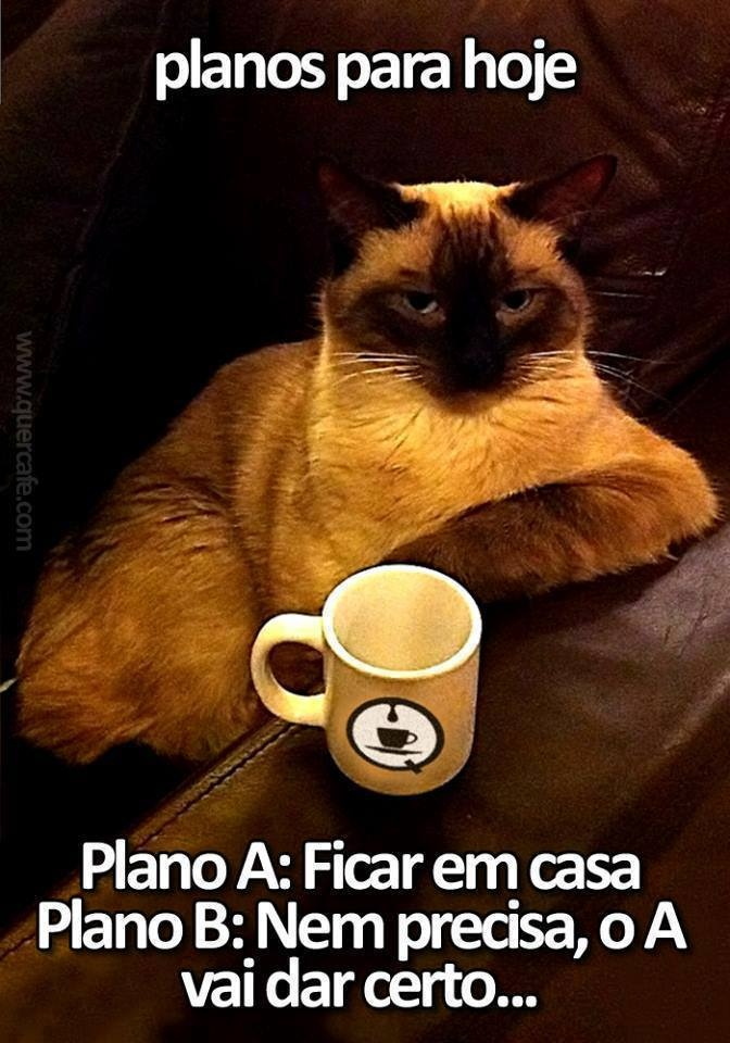 (Portuguese)  Plans for today-    Plan A: stay home.   Plan B: no need for willpower (?)