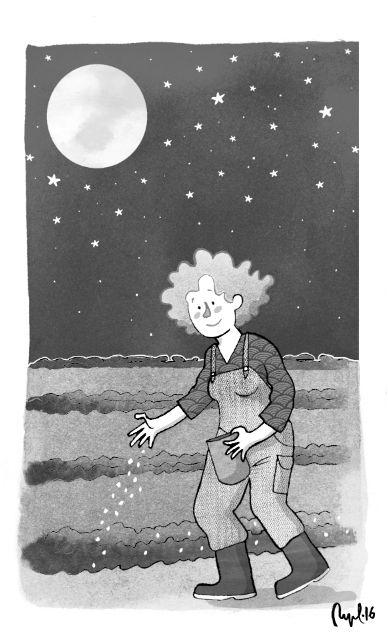 """Moonlight sowing"", illustration for a schoolbook. Summer 2016."