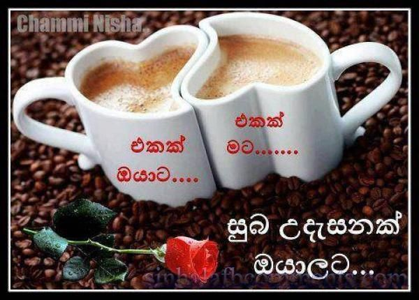 Good Morning Sinhala Facebook Photo Comments  Good Morning Quotes Sinhala