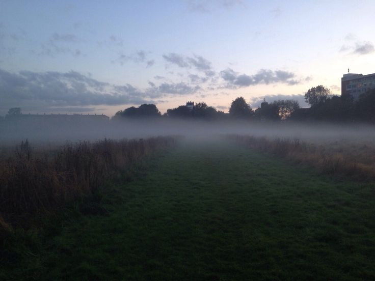 Misted fogged field in the distance..