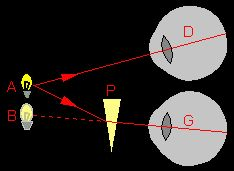 L'Optique de A à Z