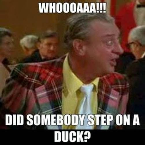 Whoa! Did somebody step on a duck? Caddyshack