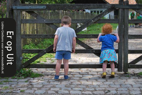 Kinderboerderij Belgie : de 7 leukste die je niet mag missen!