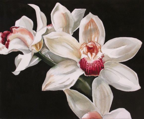 """A painting a day # 8 """"Elegant in white"""""""