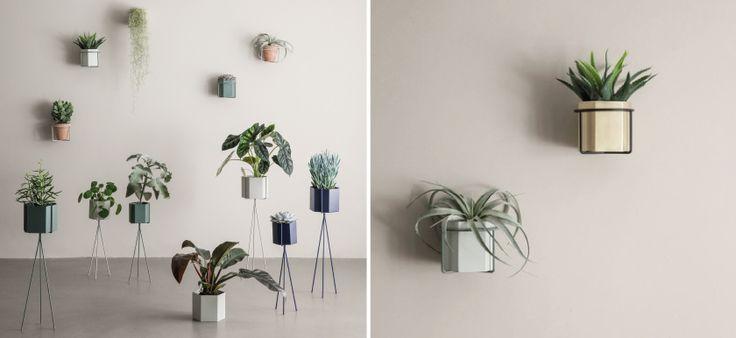 plants, fermliving, ss2016, misterdesign