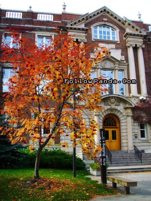 Convocation Hall / Arts Building in Autumn | University of Alberta Campus Photo - Edmonton, Alberta, Canada | FollowPanda.COM