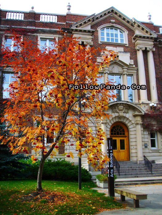 Convocation Hall / Arts Building in Autumn | University of Alberta Campus Photo - Edmonton, Alberta, Canada | FollowPanda.COM