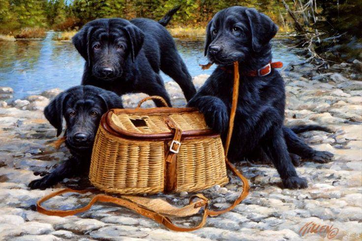 O talentoso Jim Killen, retratando a essência da beleza dos cães | #Artistas, #JimKillen, #Jmj, #Pintores