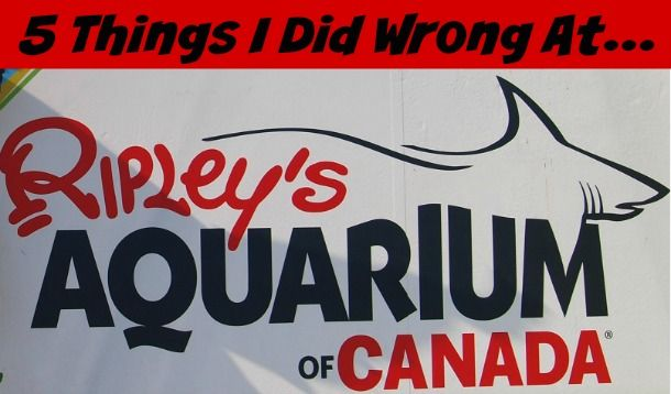 Five Things I Did Wrong at Ripley's Aquarium in Toronto #Toronto #CanadaWithKids #FamilyTravel