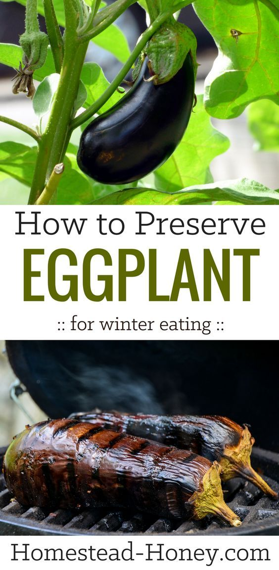 Do you love eggplants and wish they were available year round? Here's how to preserve eggplant for winter eating with a super simple technique!