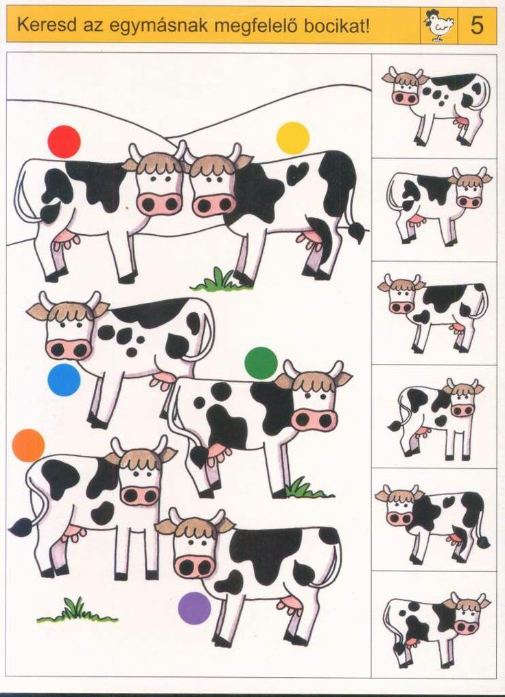 * Zoek dezelfde koe! 1-2