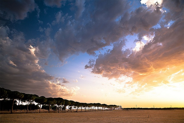 Filare by Giulio Schirosi http://www.flickr.com/groups/pugliaevents/pool/with/7558455850/#photo_7558455850