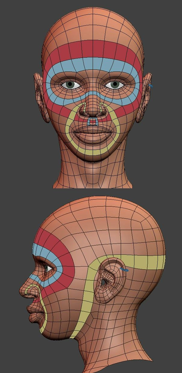 Head topology