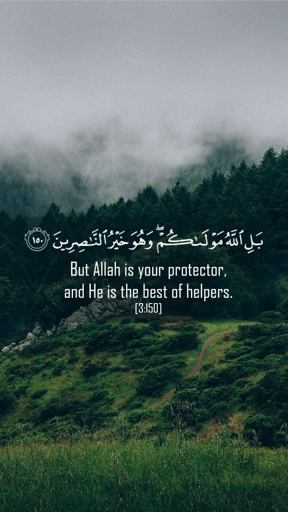 But Allah is your protector, and He is the best of helpers. Quran, imran, wallpaper, islamic, iphone, nature, jungle, allah,