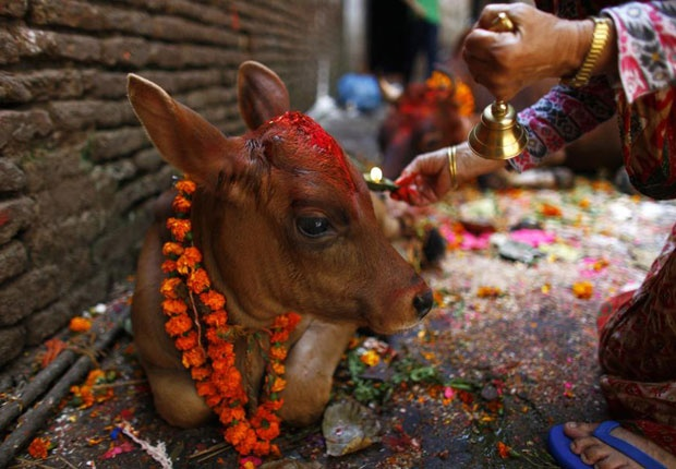 Diwali, the festival of lights, is celebrated every year on the one new moon night between mid-October and mid-November. Katmandu, Nepal.