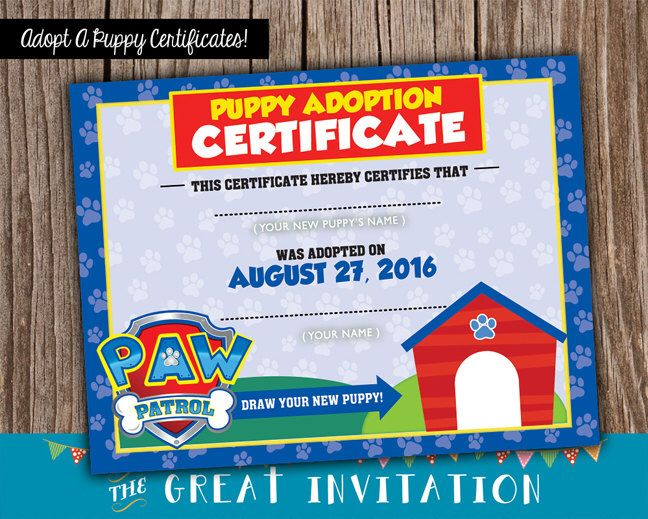 Paw Patrol Party / Puppy Adoption Certificates / Paw Patrol Puppy Certificates / Adopt A Puppy Printable Certificate by TheGreatInvitation on Etsy https://www.etsy.com/listing/460831396/paw-patrol-party-puppy-adoption