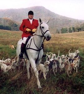 Image result for horse & beagles hunt