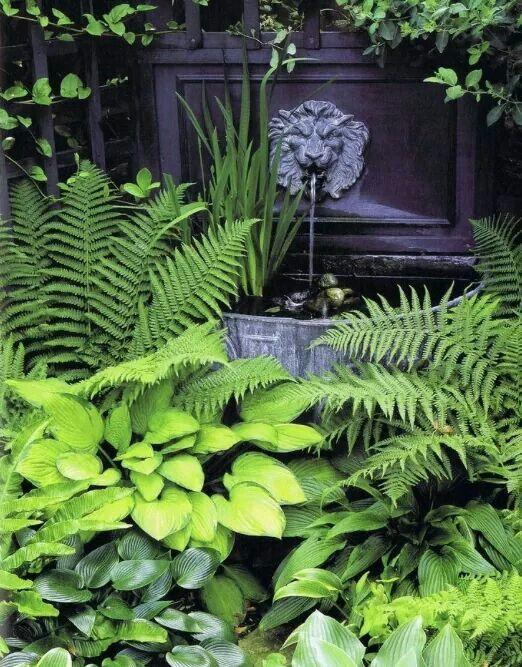 Jardines de intensos verdes