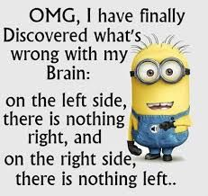 Brains are how shall I say...... Confusing!