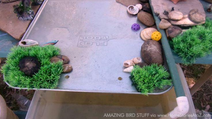 DIY Bird Bath