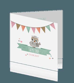 Lief kaartje geboorte meisje met uiltje en vaantje
