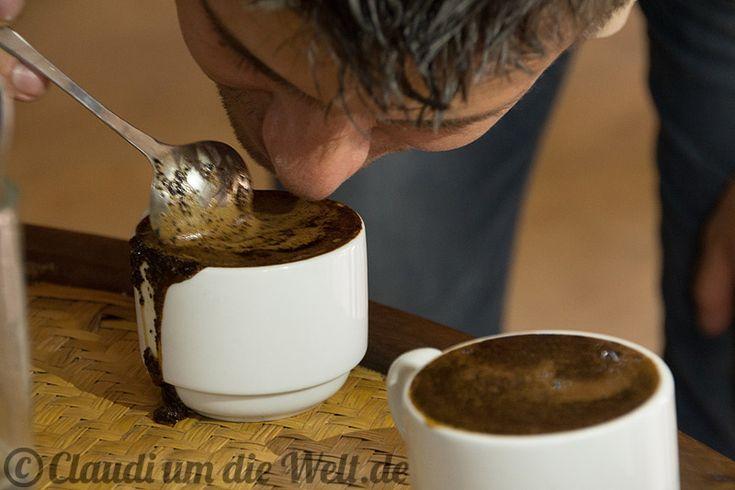 ⚡️Blitzlichter⚡️ WIE ICH IN HONDURAS HOCHLAND-KAFFEE SCHNUPPERTE