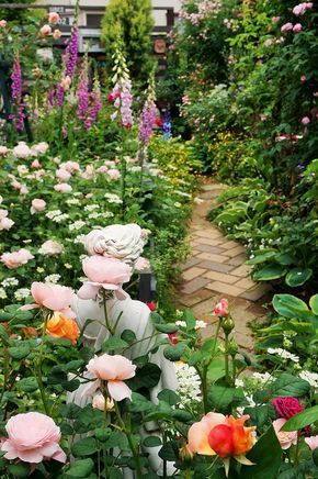 English Cottage Garden with Brick path Roses Daisy and Foxgloves