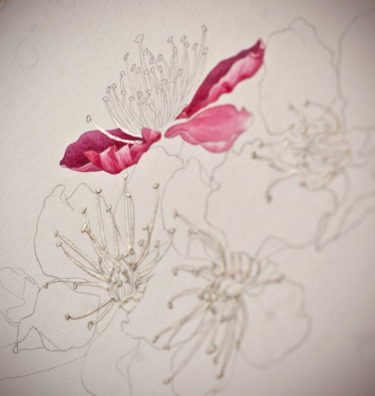 Eunike Nugroho: [TIPS] Cherry Blossom: The Fear of Masking Fluid