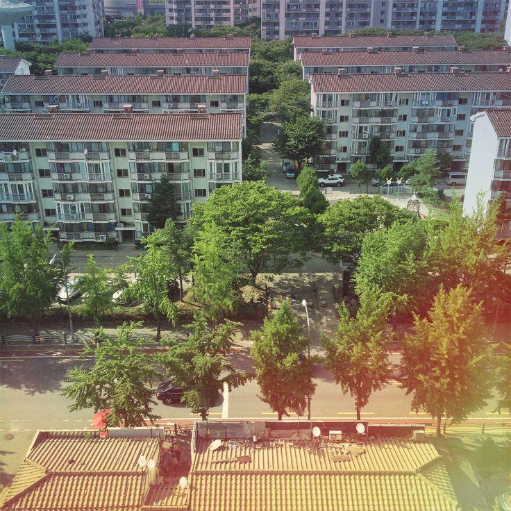 이웃 풍경