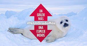 WWF España - Casi el 30% de las especies podrían desaparecer por el cambio climático