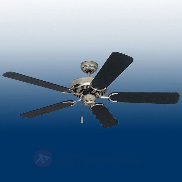 Black plafondventilator veilig & makkelijk online bestellen op lampen24.nl