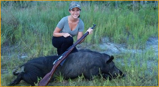Central Florida Hog Hunts