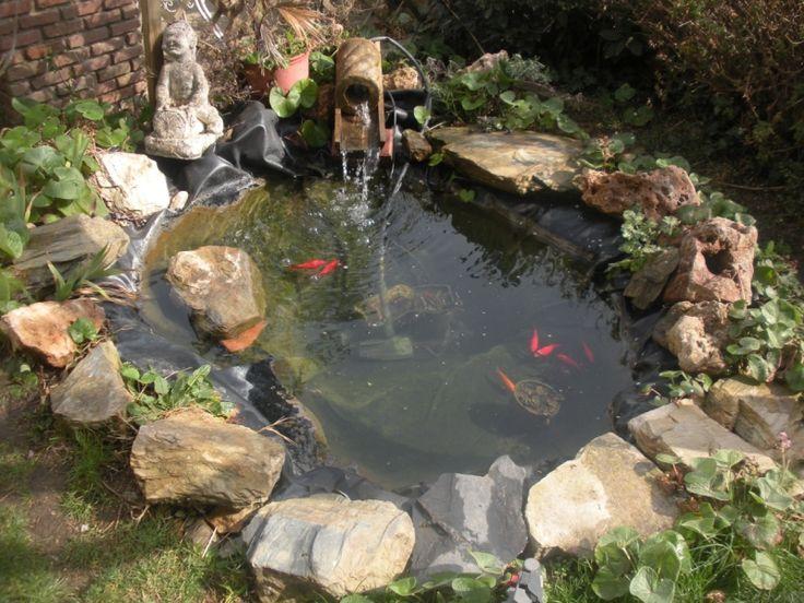 Estanque peque o con peces ponds and fountains for Estanque koi pequeno